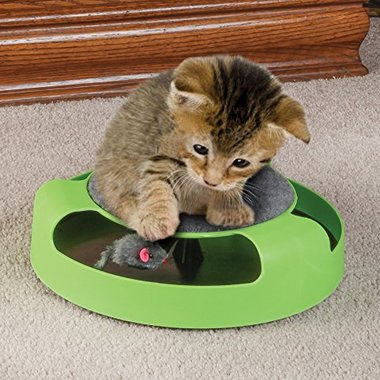 Gifts 4 All - Cat Toy with Moving Mouse
